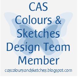 CC&S Design Team Member